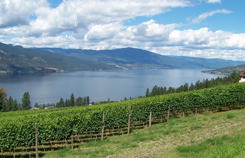 North Okanagan Lake